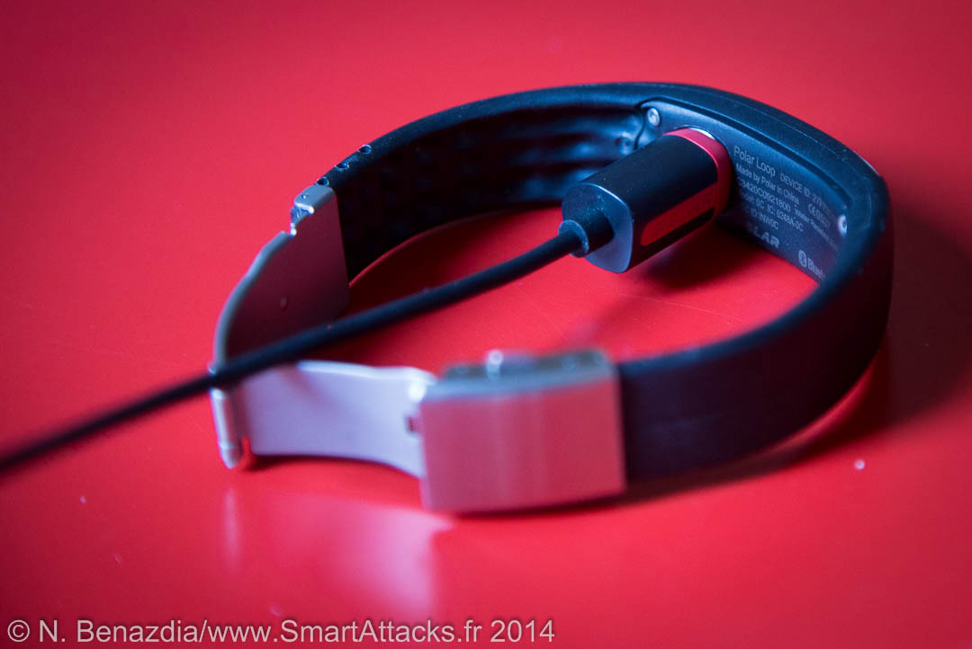Bracelet Loop Polar-11