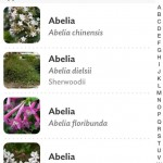 La base de données sur l'application permet d'accéder à plus de 6000 plantes différentes.